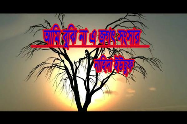 বুঝিনা এ জগৎ সংসার