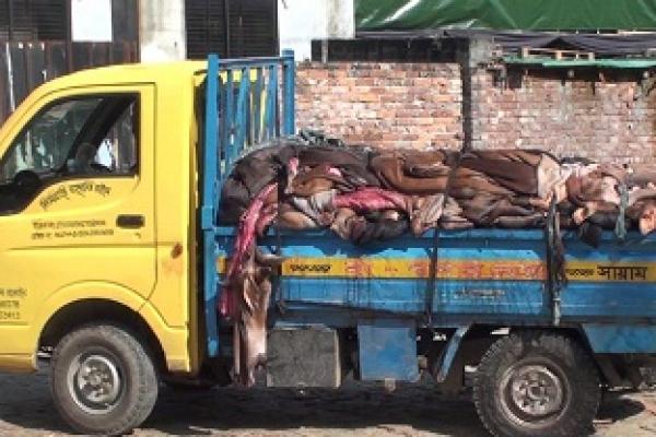 সাভার ট্যানারিতে ট্রাকে ট্রাকে ঢুকছে কাঁচা চামড়া, কোথায় থেকে আসছে কেউ জানে না