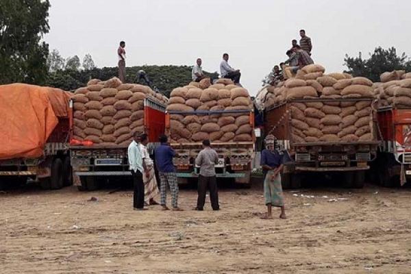 নিষেধা'জ্ঞার কারণে বাংলাদেশ সীমান্তে আসার পরেও ফেরত গেল প্রায় ৫০০ ট্রাক ভারতীয় পেঁয়াজ