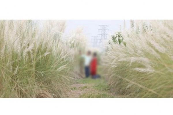 ধ'র্ষণ ও যৌ'ন হয়রানি রোধে অভি'যান; কাশবন থেকে ২১ কিশোর-কিশোরী আট'ক