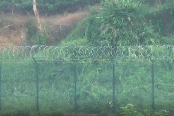শূন্যরেখায় বিএসএফের কাঁটাতারের বেড়া স্থাপনের চেষ্টা, বিজিবি'র বাধায় কাজ বন্ধ