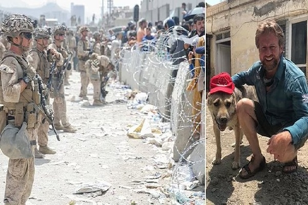 এবার গাধা-কুকুর-বিড়াল নিতে আফগানিস্তানে বিমান পাঠাবে যুক্তরাজ্য