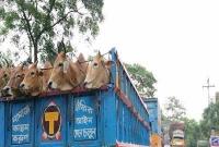 ঢাকা-টাঙ্গাইল মহাসড়কের ৬০ কিলোমিটার দীর্ঘ যানজট