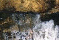 জেনে নিন পবিত্র জমজম কূপের সৃষ্টি ইতিহাস