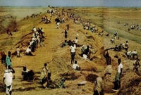 ১৯৭০ সালের ঘূর্ণিঝড় 'গোর্কি'র তাণ্ডব এখনও ভুলতে পারেননি নোয়াখালী উপকূলবাসী