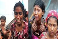 রোহিঙ্গা নিধন: '২০ দিন বন-জঙ্গলে লতাপাতা খেয়ে ছিলাম, কোন মতে প্রাণ নিয়ে পালিয়ে এসেছি'