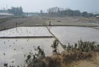 একটি জেলার ১২ নদী শুকিয়ে কাঠ, সেচ দিয়ে চলছে চাষাবাদ
