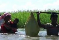 রোহিঙ্গা-ঢল-অব্যাহত-থাকায়-ভয়াবহ-বিপর্যয়ের-মুখে-বাংলাদেশ