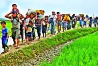 রোহিঙ্গা-গণহ-ত্যায়-মিয়ানমারের-বিরুদ্ধে-জাতিসংঘের-সর্বোচ্চ-আদালতে-মামলা