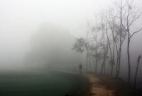 মৌলভীবাজারের শ্রীমঙ্গলে সর্বনিম্ন তাপমাত্রা ১১ দশমিক ৬ ডিগ্রি