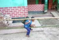 যে কারণে বাঁশে বেড়ার মাঝ দিয়েই স্কুলে যেতে হয় শিশু তানভিরকে
