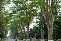 ক্ষুধা-নিবারণে-রাতের-আঁধারে-আম-রাবি-ছাত্রকে-পুলিশে-দিল-কর্তৃপক্ষ-