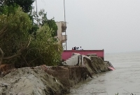 পদ্মার  অব্যাহত ভাঙনে নতুন এলাকা বিলীন