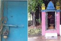 চুরি-রোধে-বার-আউলিয়ার-দরবার-শরিফের-দানবাক্স-পাহারা-দিচ্ছে-এক-সাপ-