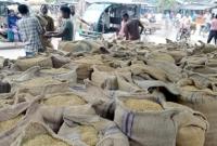 ঠাকুরগাঁওয়ে-ধানের-মণ-৩০০-টাকা-কৃষকের-কান্না