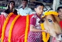 দীর্ঘায়ু-কামনা-করে-শেখ-হাসিনার-নামে-গরু-কোরবানি-দেবেন-কৃষক