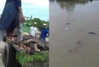 নদীতে-হাজার-হাজার-পশুর-চামড়া-ভাসিয়ে-কাঁদছেন-মাদরাসার-ছাত্ররা