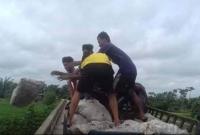 দাম-না-পেয়ে-ক্ষোভে-দুঃখে-নদীতে-চামড়া-ফেলছেন-ব্যবসায়ীরা