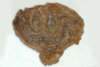 প্রবাসীর-কোরবানির-মাংসে-আরবি-হরফে-লেখা--আল্লাহু--