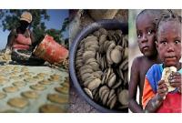 খিদে-মেটাতে-তাদের-খেতে-হয়-মাটির-বিস্কুট-
