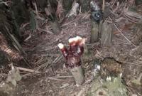 ব্রাহ্মণবাড়ীয়ায় 'গায়েবী হাত' নিয়ে ব্যাপক তোলপাড়