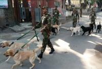 বাংলাদেশ-সেনাবাহিনীকে-শুভেচ্ছা-হিসেবে-১০টি-কুকুর-উপহার-দিল-ভারত