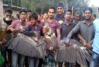 দিনাজপুরে-বিরল-প্রজাতির-শকুন-উদ্ধার