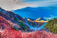 বাংলাদেশ-থেকে-মাত্র-১১৫-কি-মি-দূরে-৫১০০-ফুট-উপরে-পাহাড়-আর-সবুজের-সাম্রাজ্য