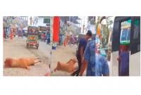 ভাড়া-নিয়ে-তর্কের-জেরে-চলন্ত-বাস-থেকে-এই-নারীকে-ধাক্কা-দিয়ে-ফেলে-দিল-হেলপার-