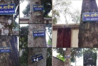 আল্লাহর-নাম-শোভা-পাচ্ছে-ফরিদপুরের-গাছে-গাছে