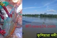 জালে-ধরা-পড়লো-৪৭-কেজির-বাঘাইড়-মাছ-বিক্রি-হলো-৪৯-হাজার-টাকা